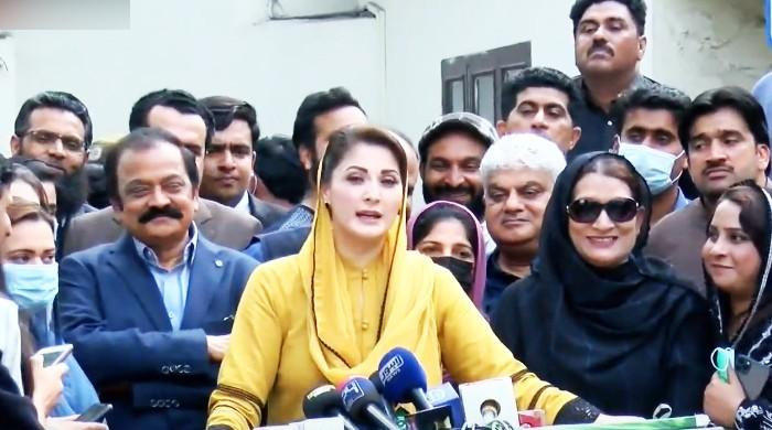 Maryam says 'government will chew more money to recover Nawaz's assets'
