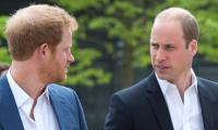 Prince William and Prince Harry catch up on video calls regularly as ties improve