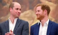 Prince Harry will pass on royal titles to Prince William following royal exit