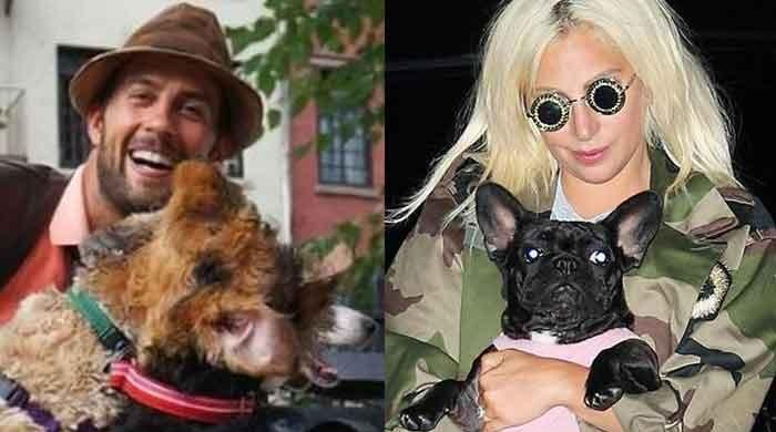 Lady Gaga's dog walker in stable condition after being shot four times in chest by thieves