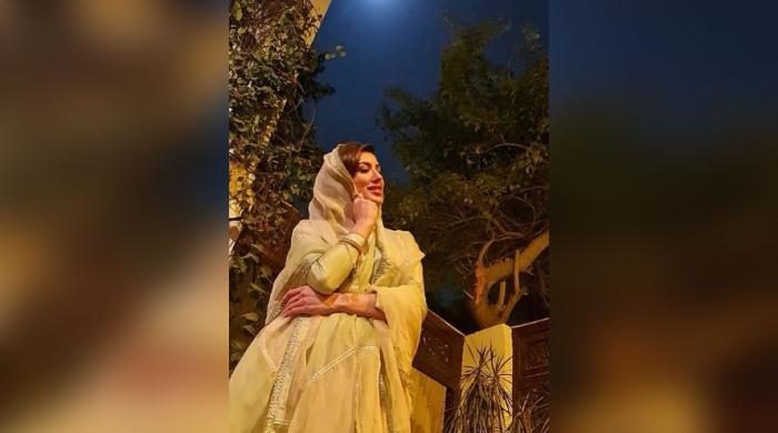 Mehwish Hayat's dreamy snap leaves jaws dropped