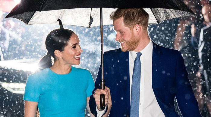 Experts weigh in on changing 'relationship tides' amid Prince Harry, Meghan Markle