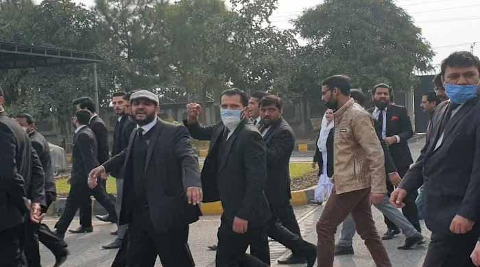6 more lawyers granted bail in IHC attack case