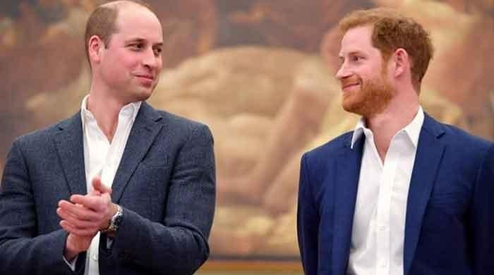 Oprah Winfrey interview would ruin Prince Harry's relationship with Prince William: expert