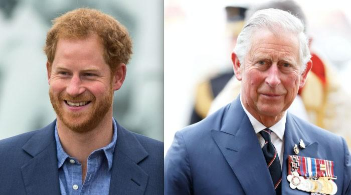 Prince Charles to have 'profound misgivings' with Prince Harry after bombshell interview