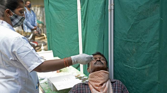 UN reports says coronavirus may become 'seasonal' disease