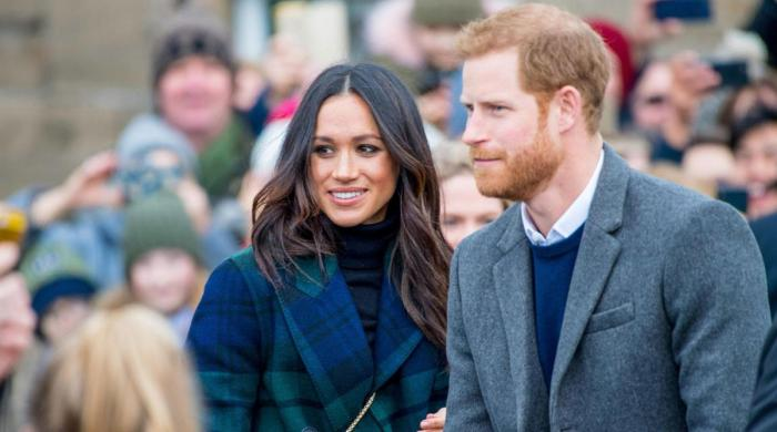 Meghan Markle, Harry desperate 'to prove themselves to royal family - The News International