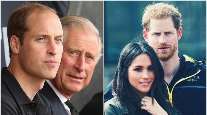 Expert blasts Harry and Meghan over not respecting privacy of royal family