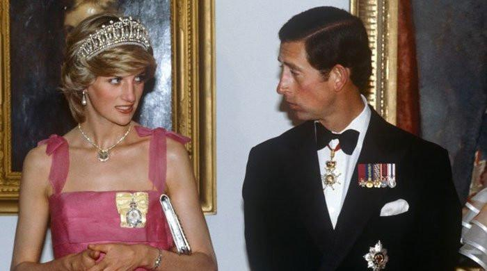 Princess Diana was 'stranded' and 'humiliated' by Charles at an event for Camilla