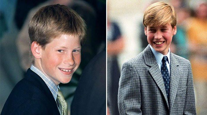 Prince Harry and William's high school experiences were poles apart: schoolmate