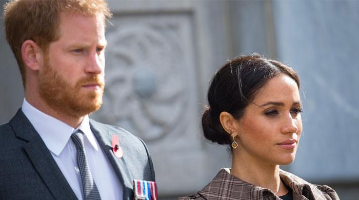 Prince Harry, Meghan Markle bashed for not noticing their 'very entitled position'