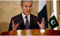 FM Qureshi says Pakistan and Turkey will jointly move UN to hold meeting on Palestine