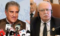 In conversation with FM Qureshi, Palestinian counterpart appreciates unflinching support