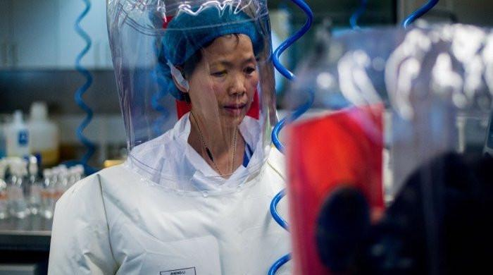 Chinese scientist at centre of coronavirus controversy denies lab leak theory