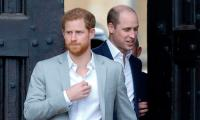 Princess Diana fails to bring Prince Harry, William together after rift