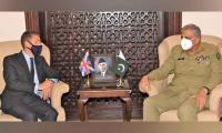 British High Commissioner acknowledges Pakistan's efforts for regional peace