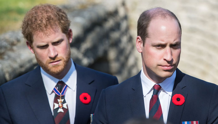 Prince William 'threw Harry out' over accusations against Meghan Markle