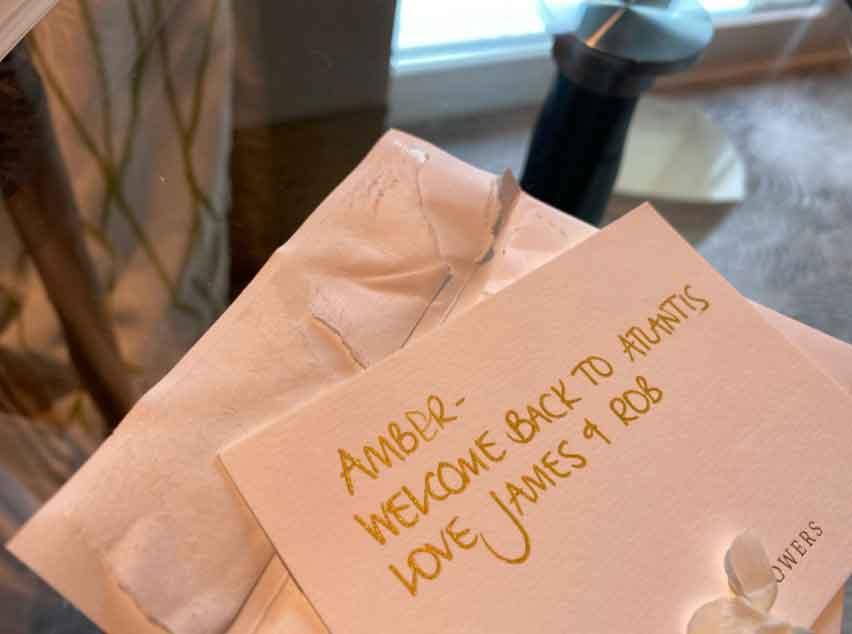 Amber Heard aka Meera returns to Atlantis