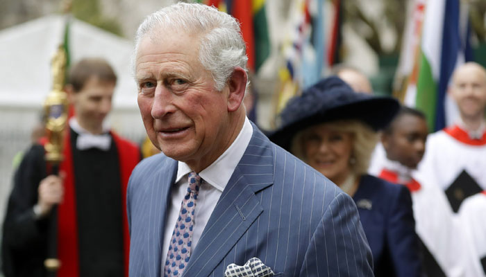 Prince Charles bashed for plans to 'slim down monarchy: 'Archie will never be prince'