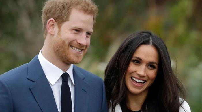 Meghan Markle opens up about poem 'The Bench' in first chat after Lili's birth