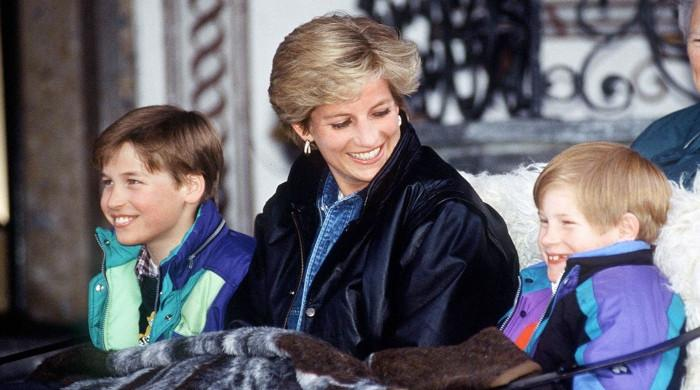 What Princess Diana would have thought about Harry's dispute with William