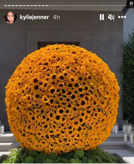 Kylie Jenner plans insanely elaborate Fathers Day celebrations for Travis Scott: See Photo