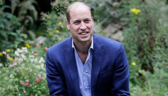 Prince William 'not impressed' with Meghan Markle, Harry's 'prima donna' attitude