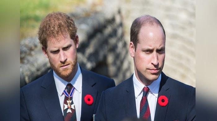 Feuding Prince Harry, William leave father Charles 'very hurt and upset'