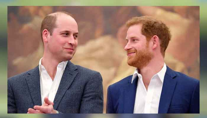 Prince Harry and William set to unveil Dians statue