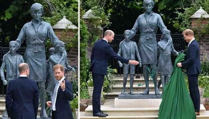 First look at Princess Dianas statue: William and Harry reunite for late mother