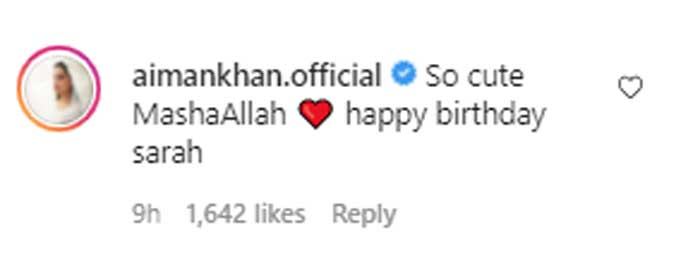 Aiman Khan, Minal send love to Sarah Khan on her 29th birthday