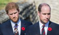 Prince William and Harry's cousin Lady Kitty ties the knot with  62-year-old billionaire
