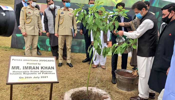 Prime Minister Imran Khan launching monsoon planation drive in Islamabad. Photo: Twitter/PM Office