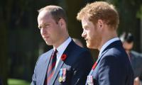 Prince Harry's new memoir will be 'the worst of all' for Prince William's future monarchy