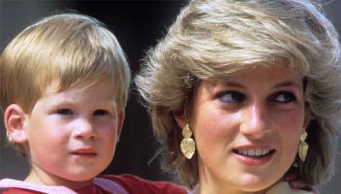 Prince Harry, William choose not to issue statement on Princess Dianas wedding anniversary