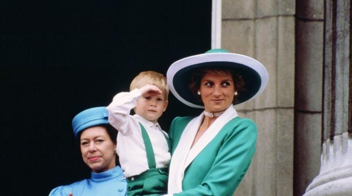 Princess Diana would have penned a memoir like Prince Harry if she hadn't died
