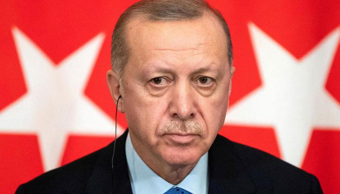 Turkeys Erdogan offers to ramp up effort towards peace in Afghanistan