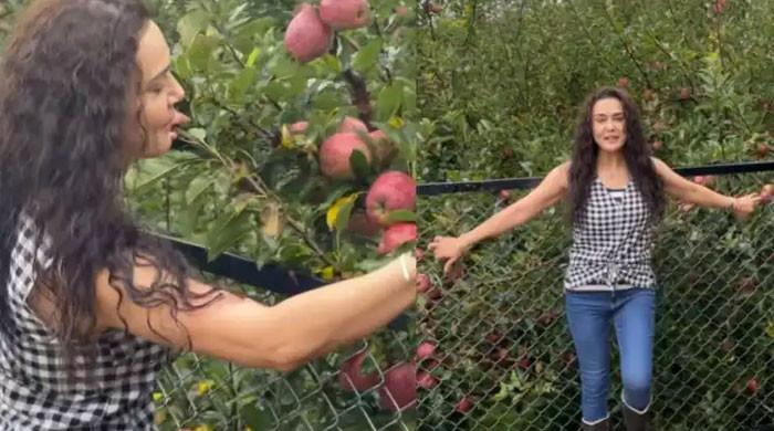 Watch Preity Zinta give fans tour of her apple tree cultivations in Shimla