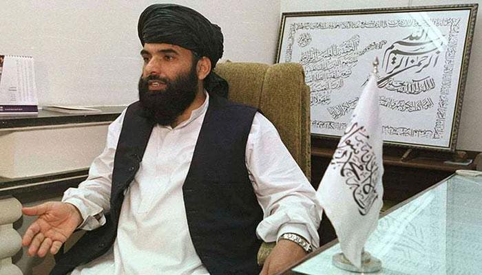 Talibans spokespersonSuhail Shaheen. Photo: file