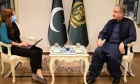 Pakistan does not have capacity to cater to more Afghan refugees: FM Qureshi