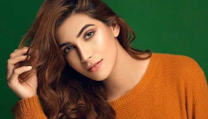 Lux Style Awards 2021: Nazish Jahangir opens up about script of drama
