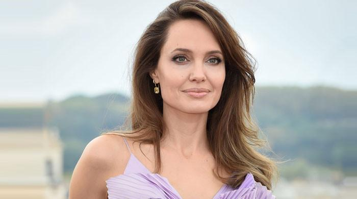 Angelina Jolie appears to be a style queen in a black pencil dress