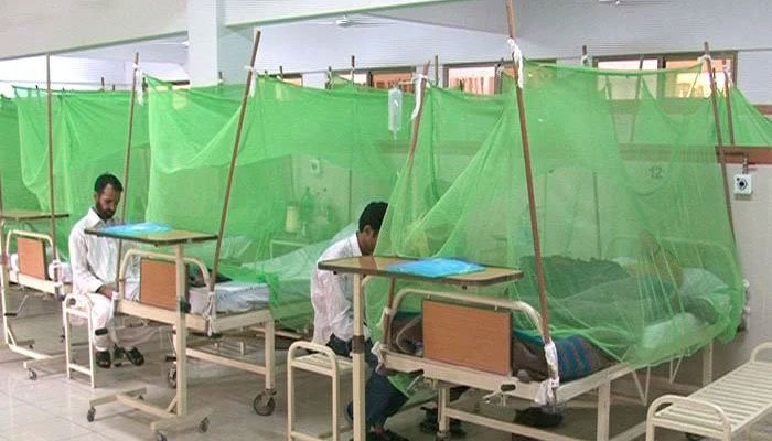 Lahore reports 81 dengue cases in the last 24 hours. Photo: file