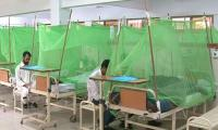 Fear Of Dengue Outbreak Looms Over Pakistan As Cases Surge In Punjab, KP