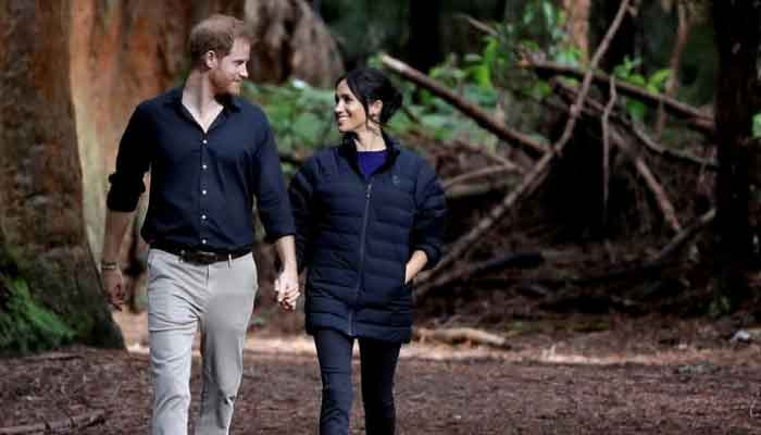 Royal expert says Prince Harry and Meghan setting themselves up to be as important as heads of govt