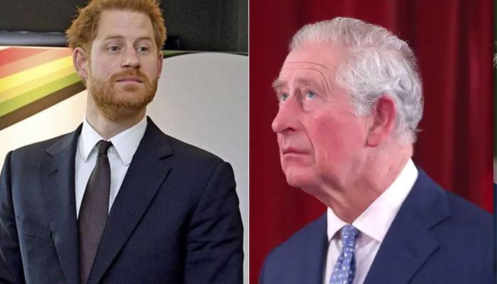 Prince Harry's grievances against royals poses 'real danger' for Prince Charles' monarchy