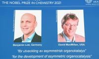 Duo wins Nobel Chemistry Prize for work on catalysts