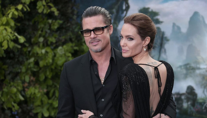 Angelina Jolie sold her shares of the estate she co-owns with Brad Pitt, to wine group Tenute del Mondo