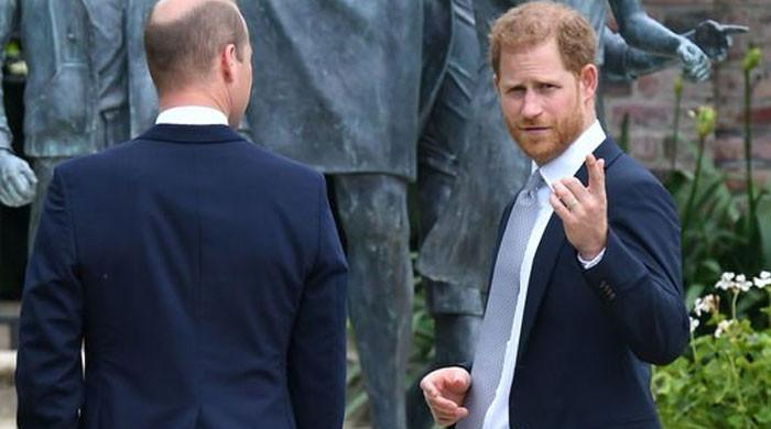 Prince Harry planning to forgo Princess Diana statue event in favor of digital donors meeting
