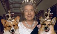 Queen Can No Longer Walk Cherished Corgis Due To Frail Health